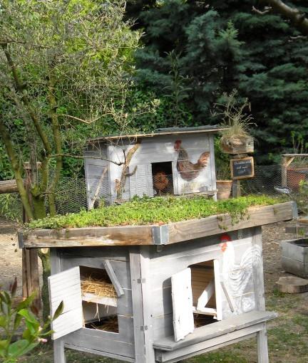 D coration abri de jardin toit vegetalise 81 dijon for Jardin 81