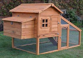 Poulailler en bois 5 volailles avec rampe d'accès et tiroir à déjections